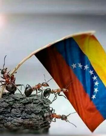 claves-emprender-en-venezuela