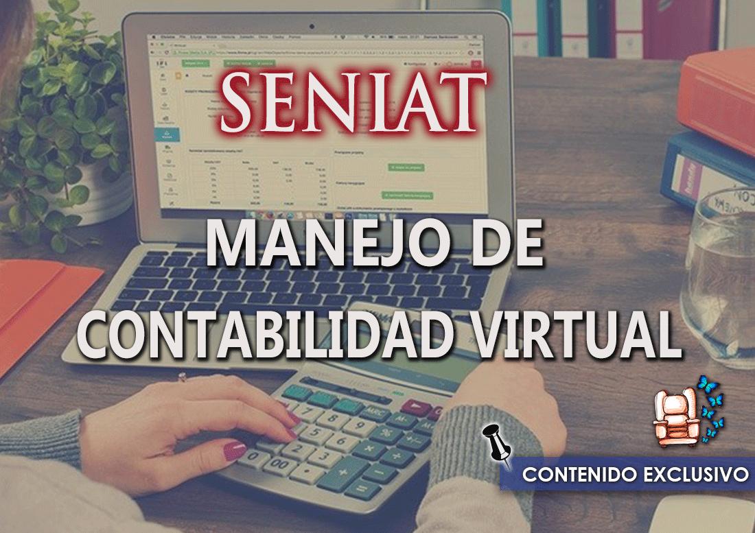 MANEJO DE LA CONTABILIDAD VIRTUAL.